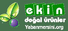 Yabanmersini.org | Yaban Mersini Üretim ve Satışı | Trabzon